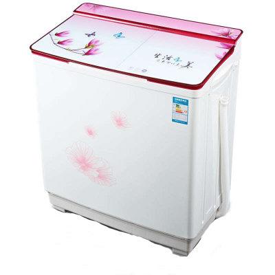 5公斤半自动双桶洗衣机 玉兰飘香(全钢桶)