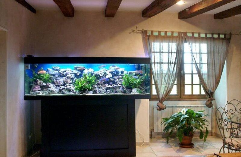 客厅鱼缸摆放风水